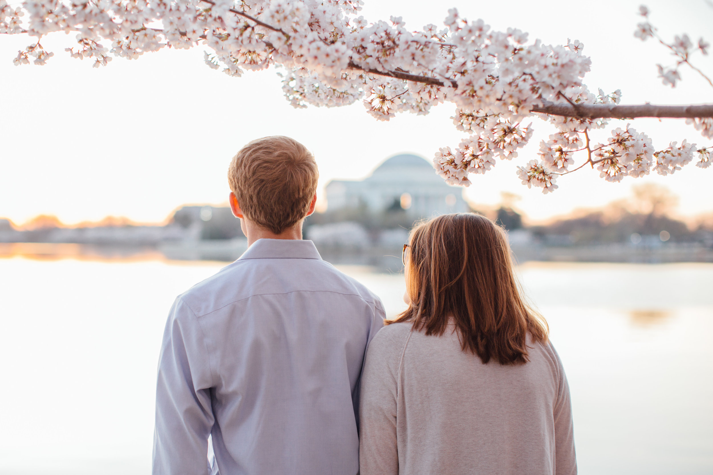 Cherry Blossom Engagement Photos at the Tidal Basin in Washington DC