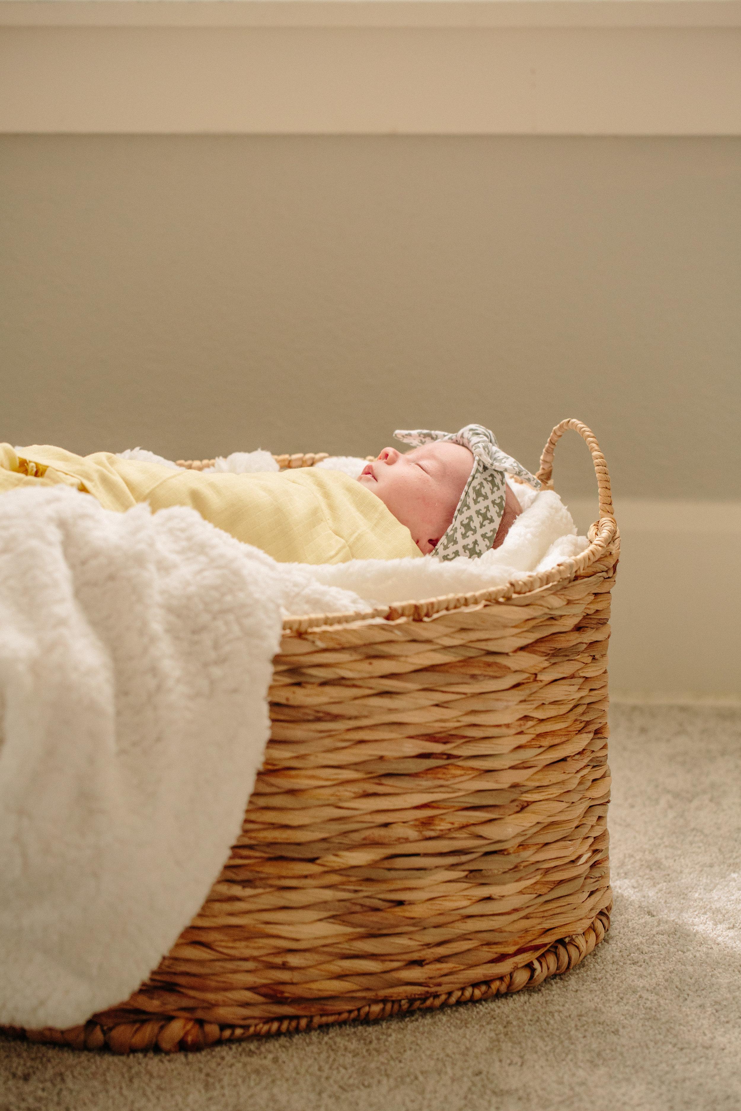 Des Moines Lifestyle Newborn Photographer