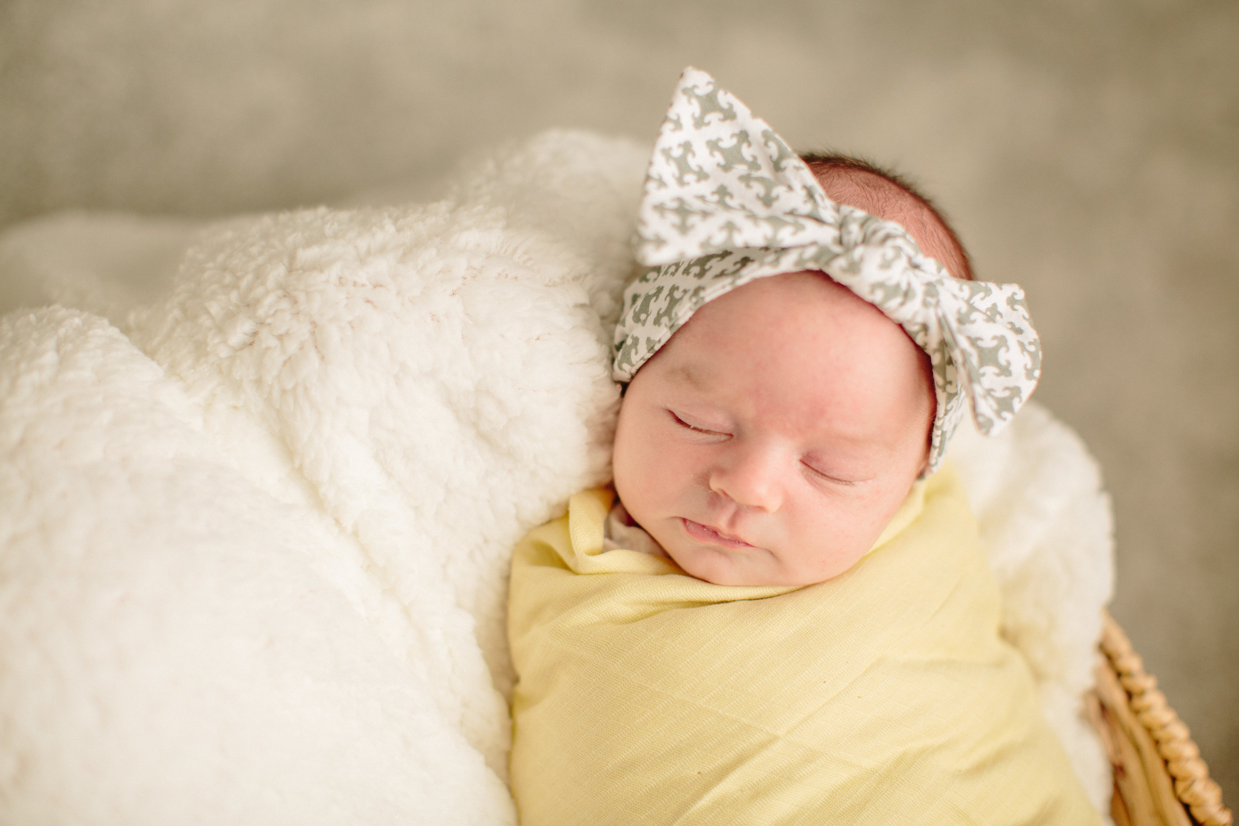 Des Moines Lifestyle Newborn Photographer