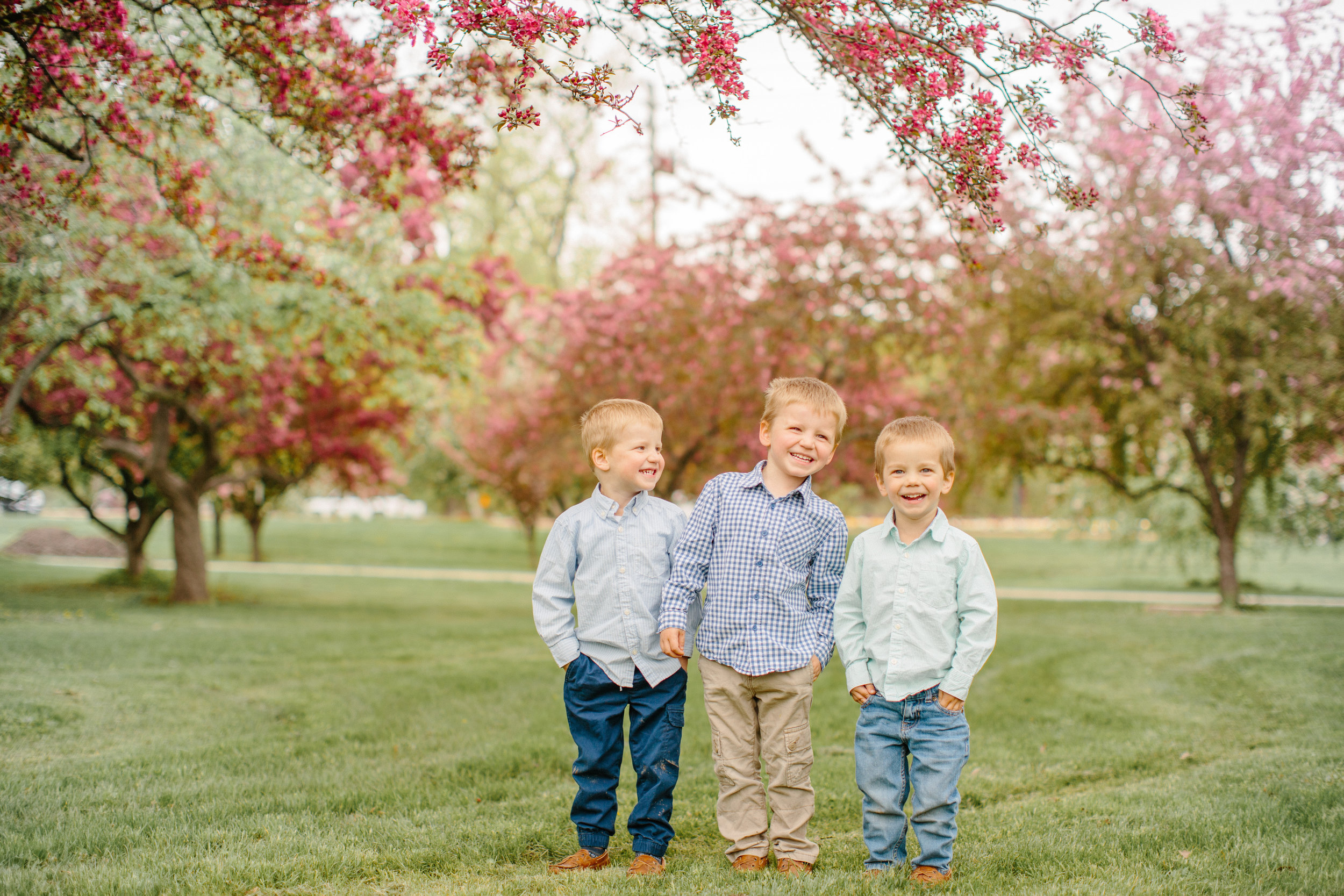 three little boys laughing together brothers twins des moines iowa
