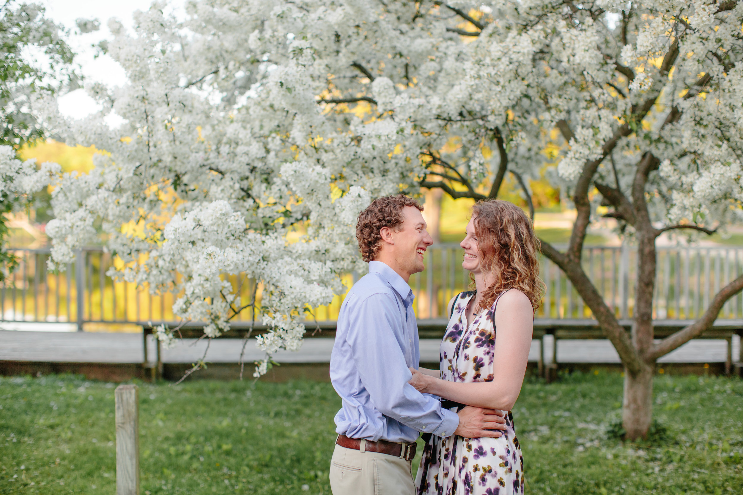 spring engagement photos des moines with white cherry blossoms