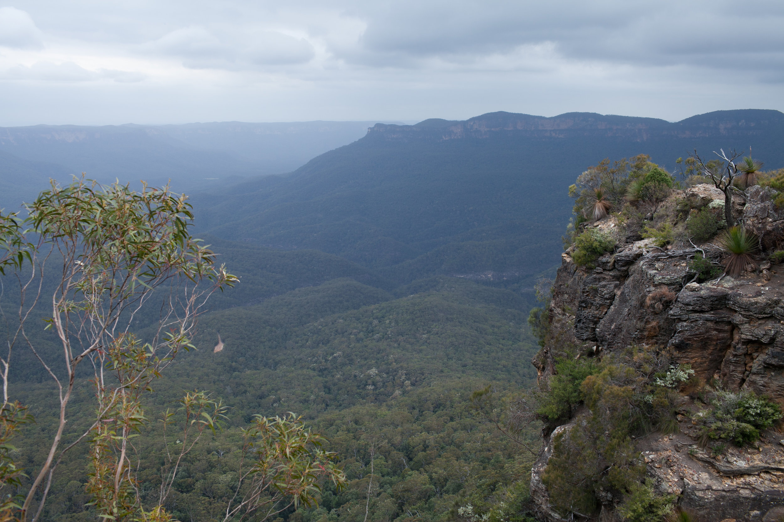 the blue mountains in Australia travel tips