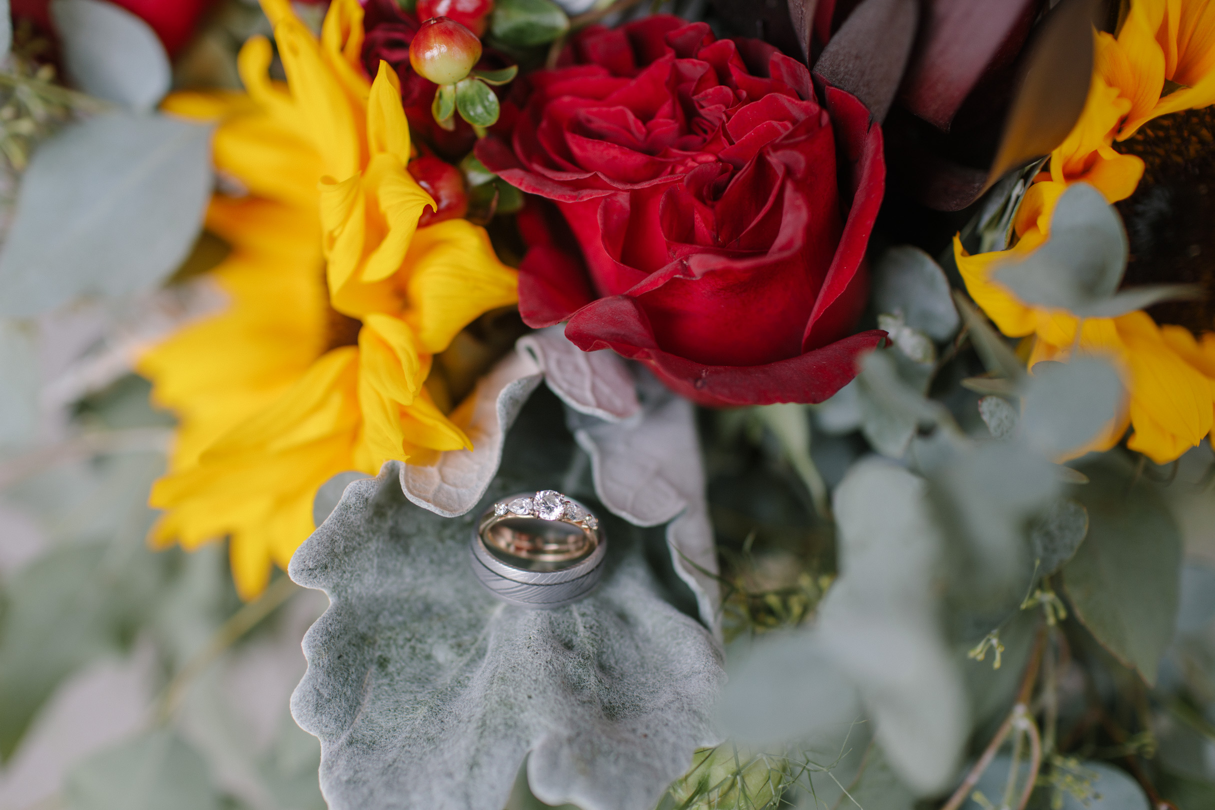 wedding rings on lambs ear and flowers