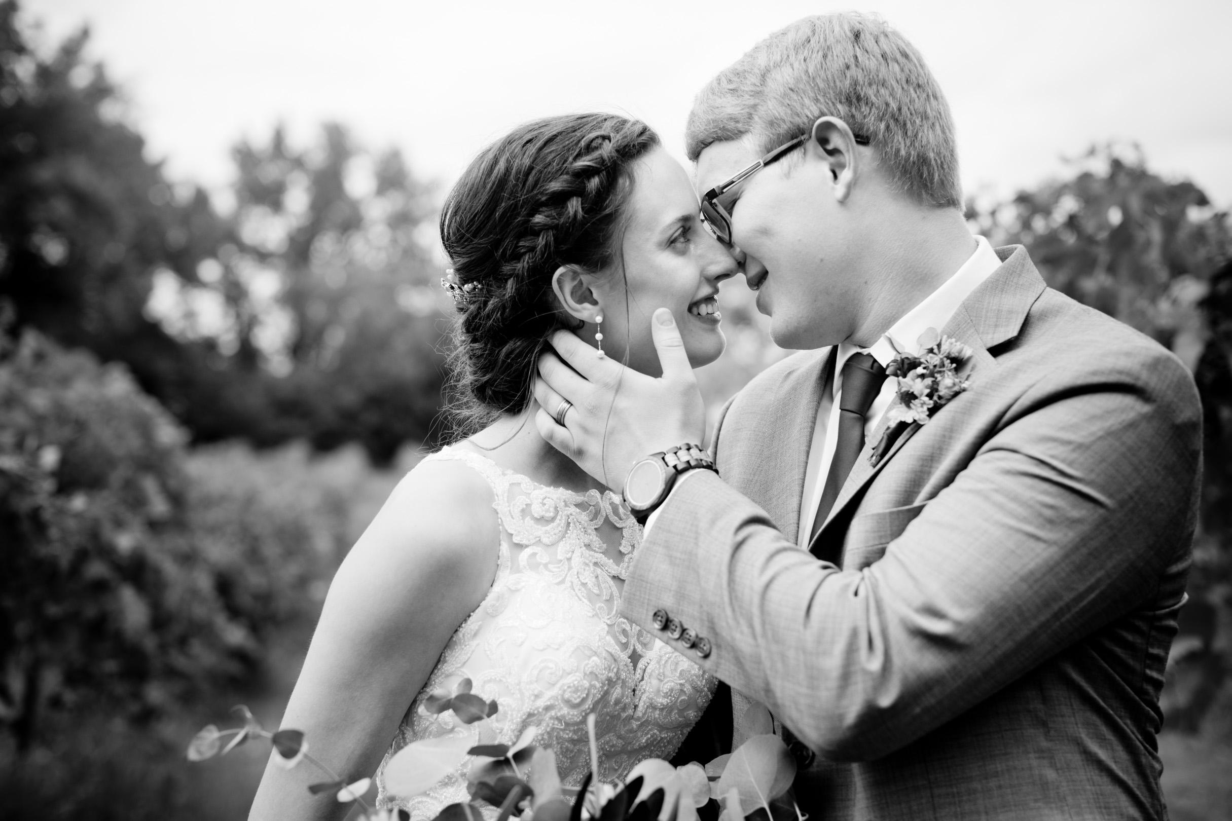 kissing in the vineyard