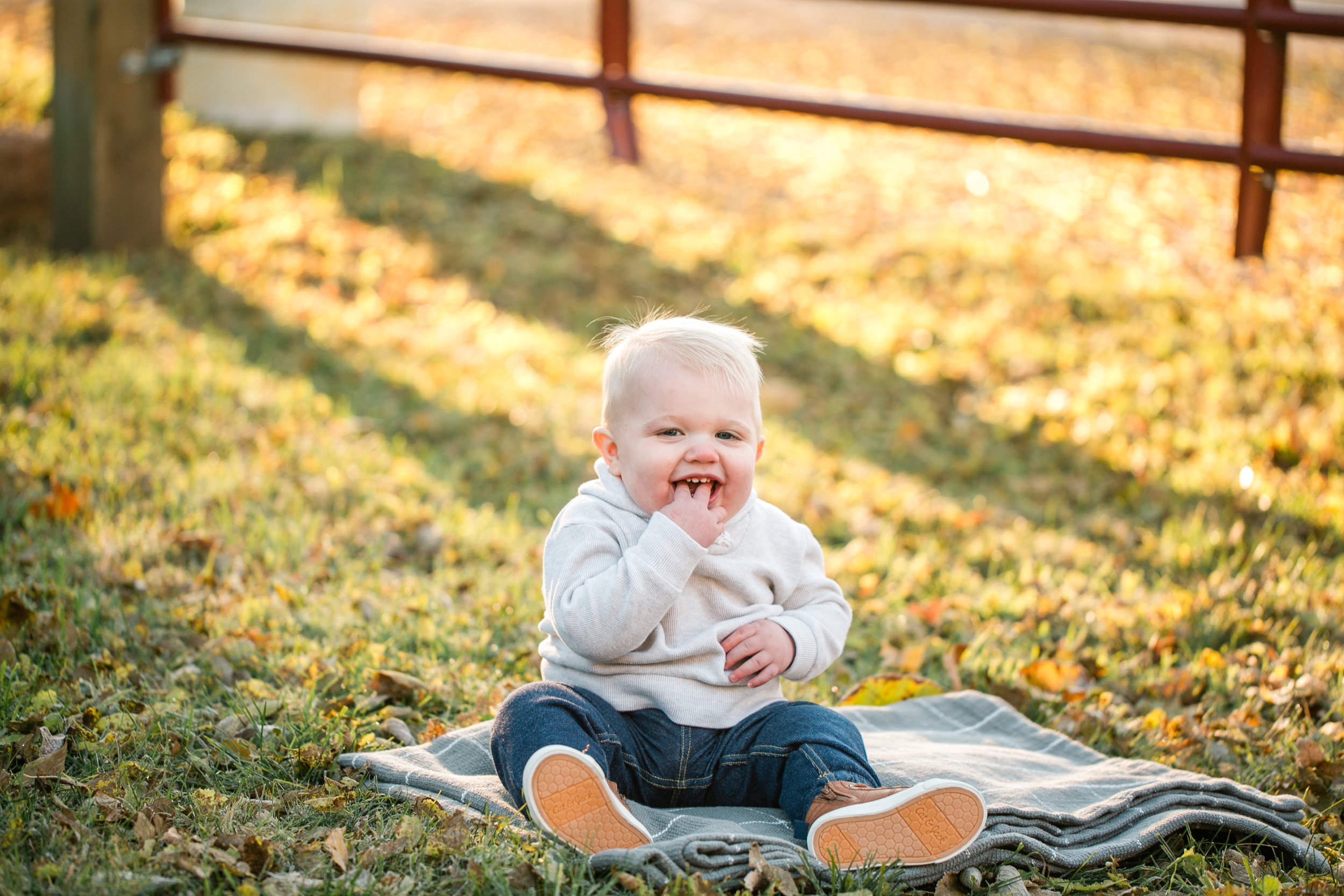 little boy baby during fall morning family mini sessions
