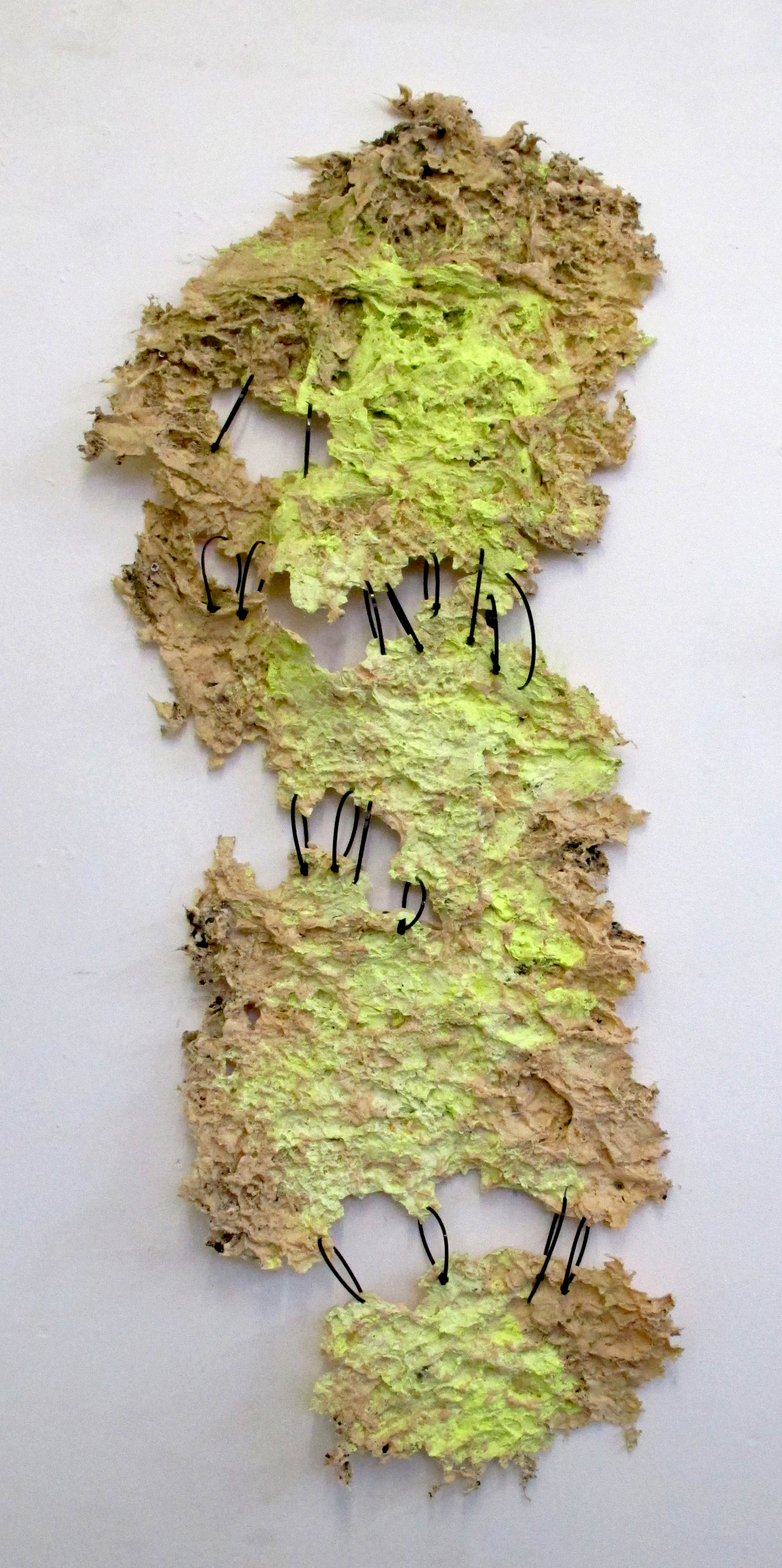 Untitled, silicone, pigment, cable ties, 130 x 49 x 4 cm