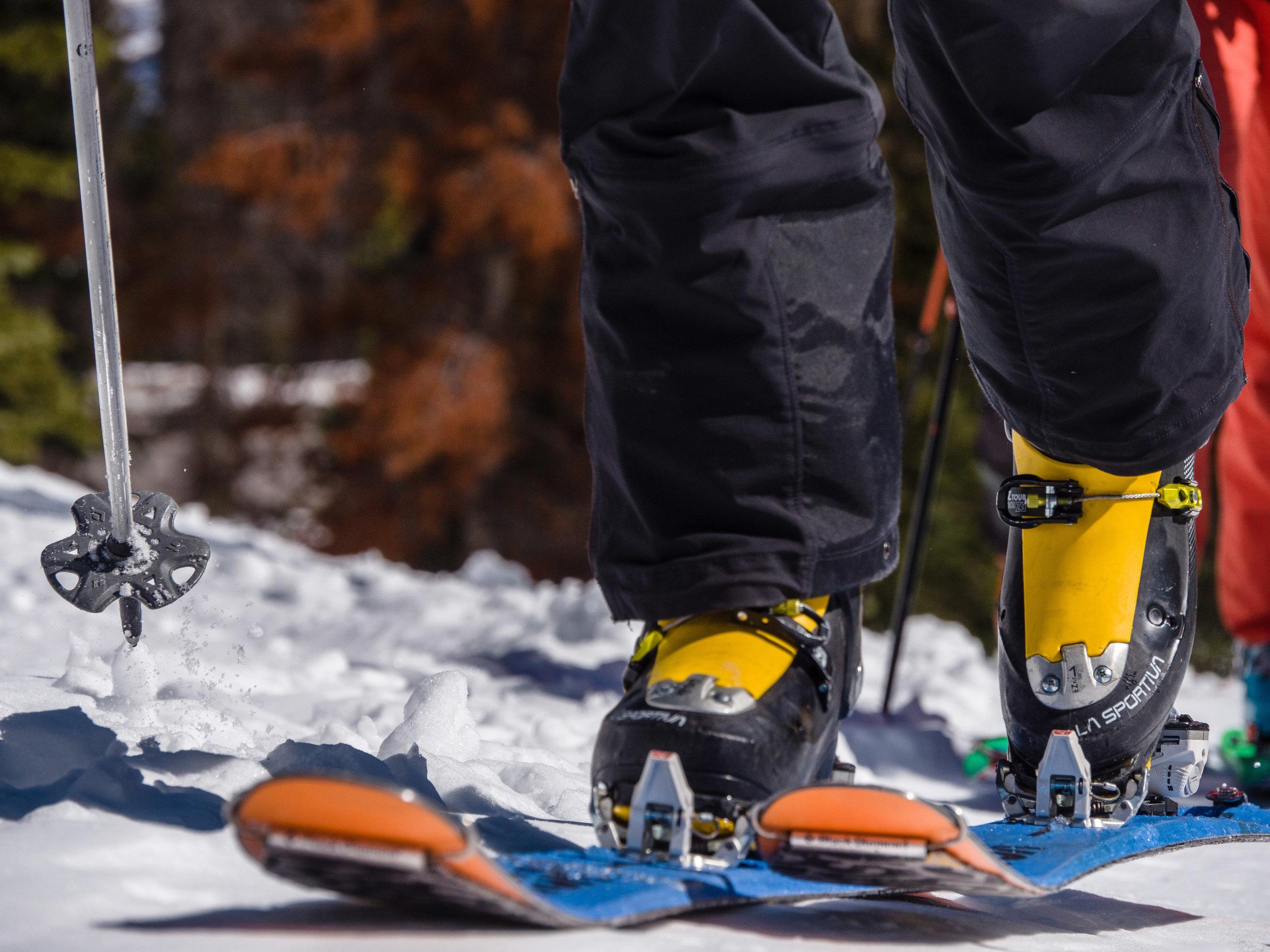 Tommy Gram Backcountry Skiing-8.jpg