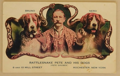 Rattlesnake Pete
