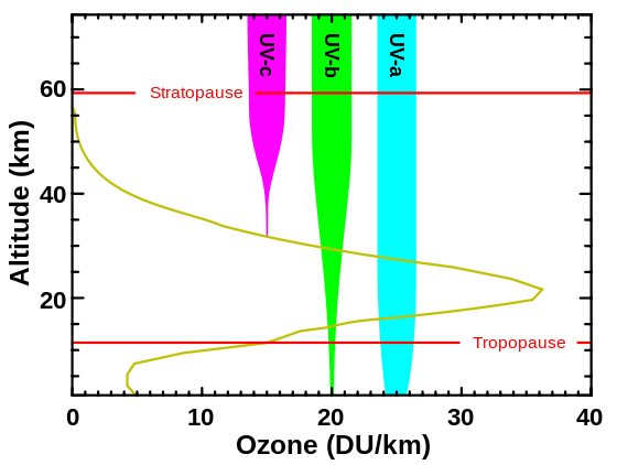 The green line represents the ozone level at each altitude.