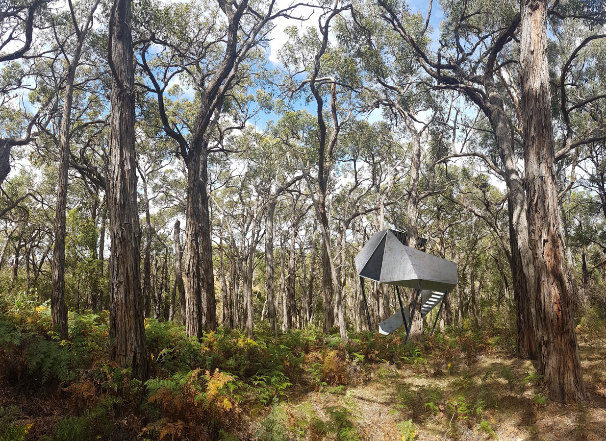 Moloughney Designs Redhill Treehouse 2.jpg