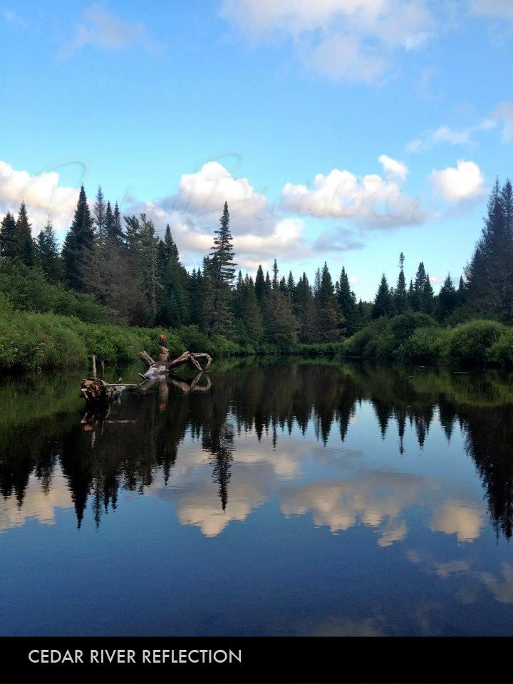 Cedar River Reflections.jpg