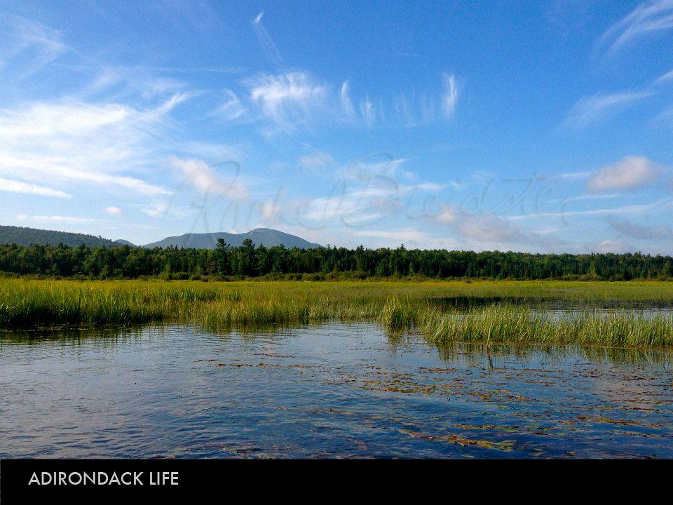 Adirondack Life.jpg