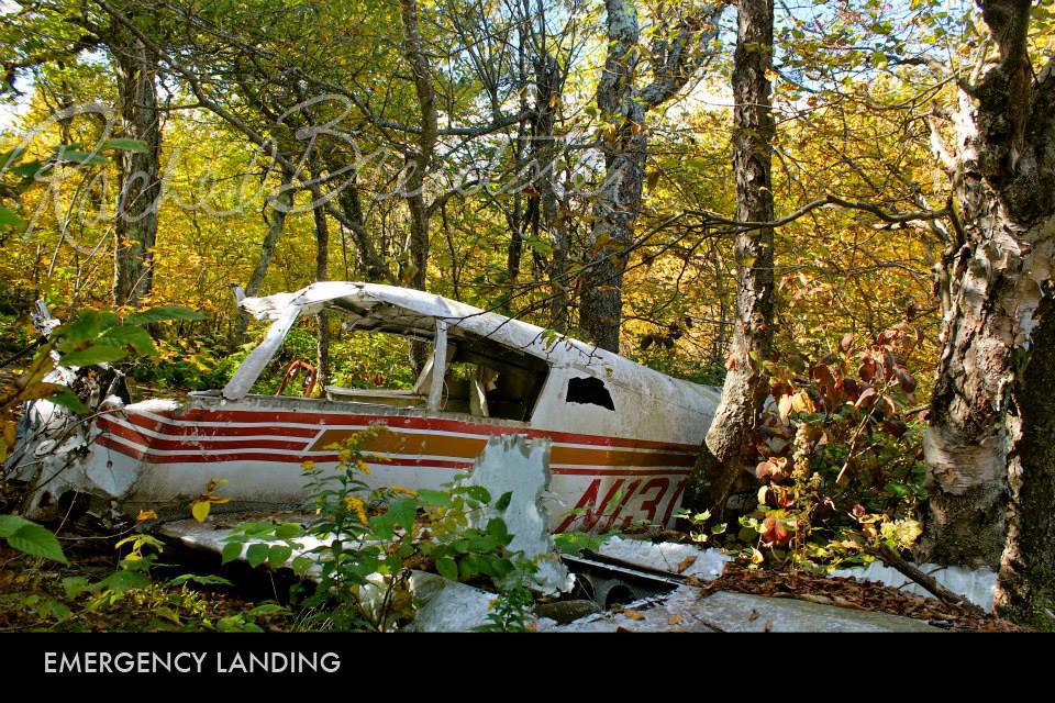 Emergency Landing.jpg