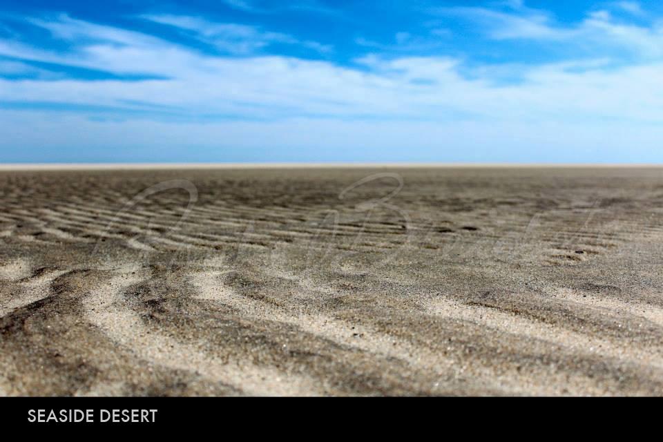 seaside-desert2.jpg