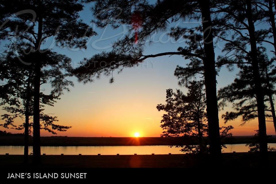 Jane's-Island-sunset2.jpg