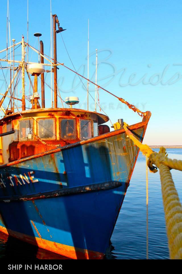 ship-in-harbor2.jpg