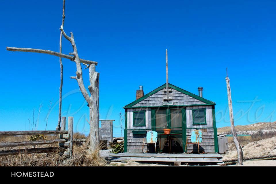 homestead2.jpg