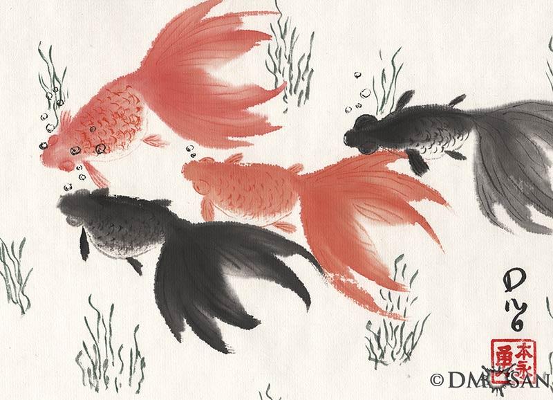 Orange and Black Goldfish