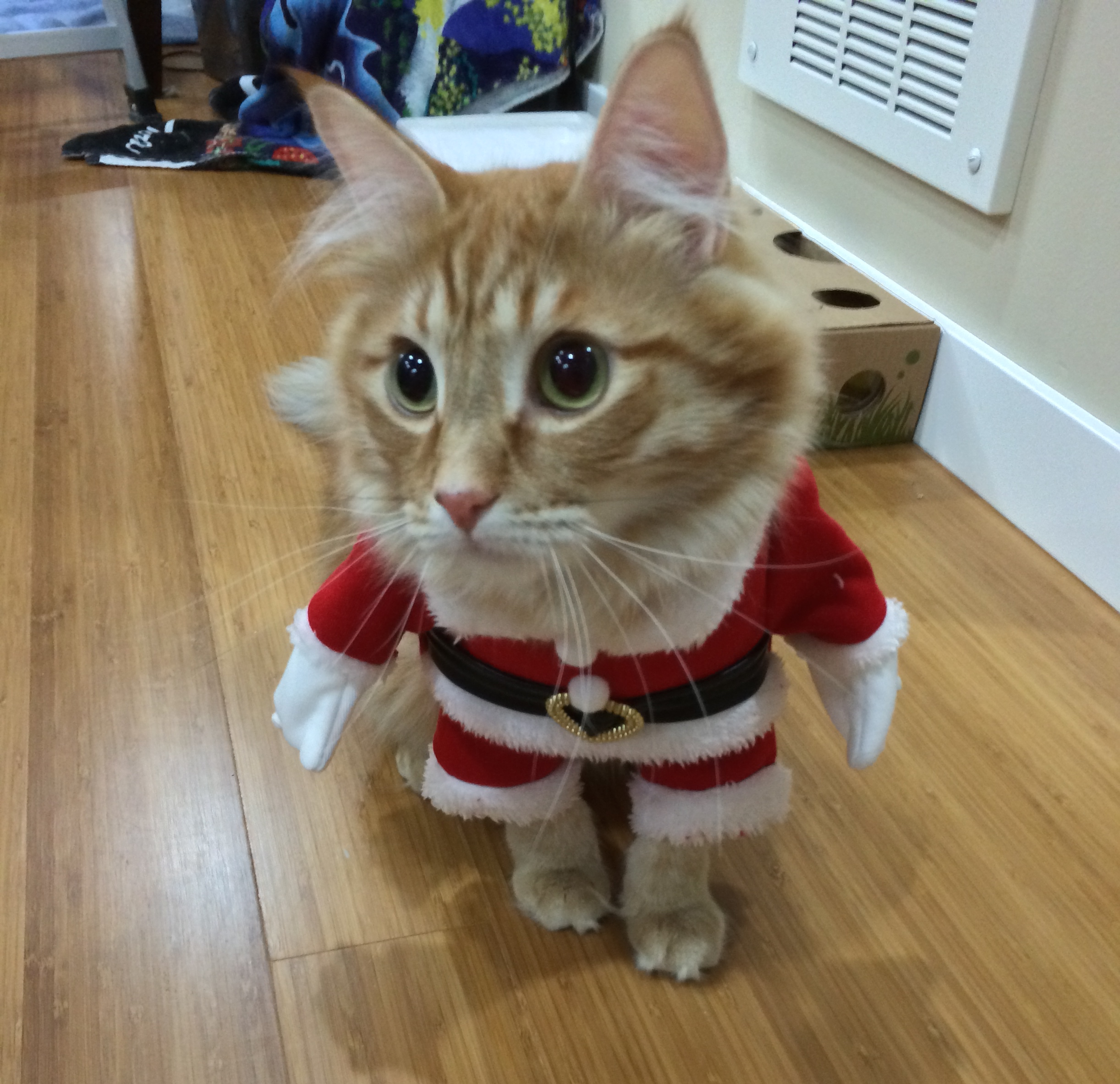 Does this outfit make my head look big?
