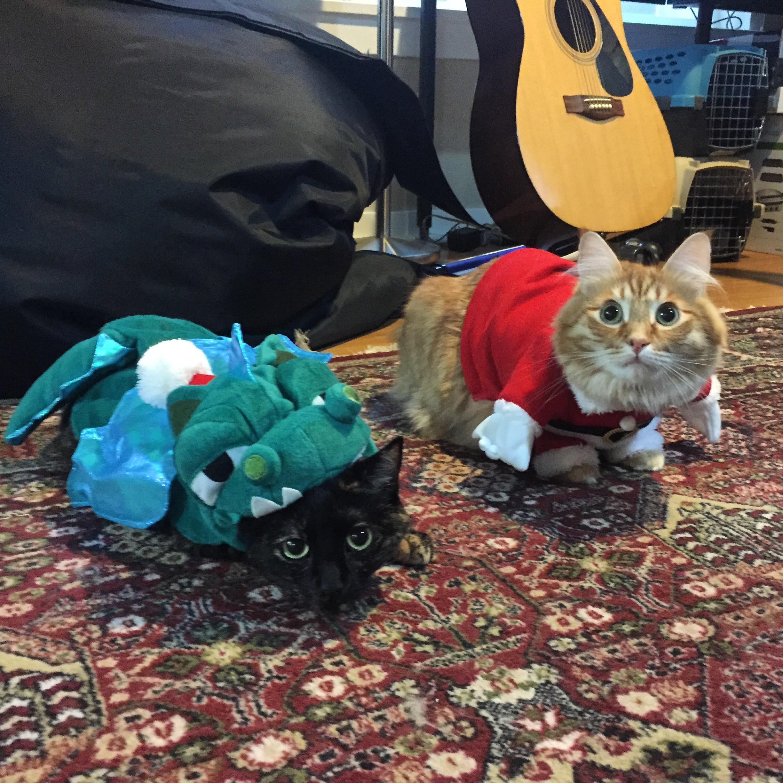 Christmas 2014 with Santa and the Xmas Dragon.