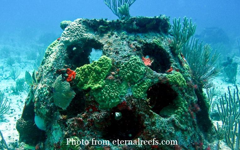 Eternal-Reefs-burial-at-sea-reef-ball-1.jpg