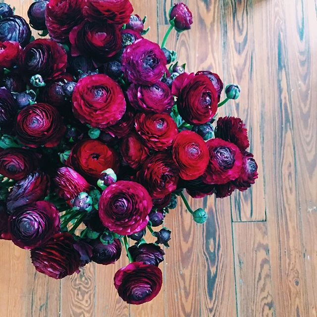 The ranunculus are just as amazing!! #floristfire #tampaflorist #tampaweddings #vhsweddings #vintageheightsstudio #ranunculus