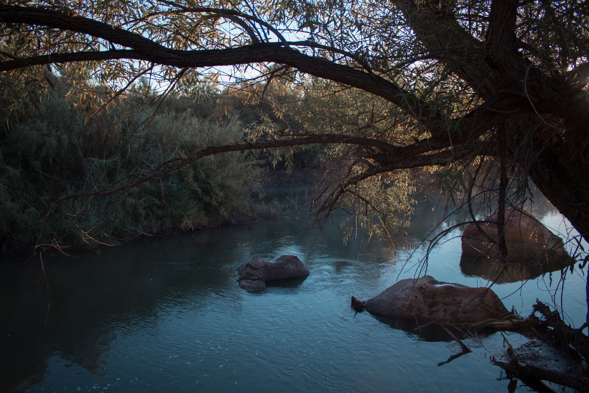riverfog-8623.jpg