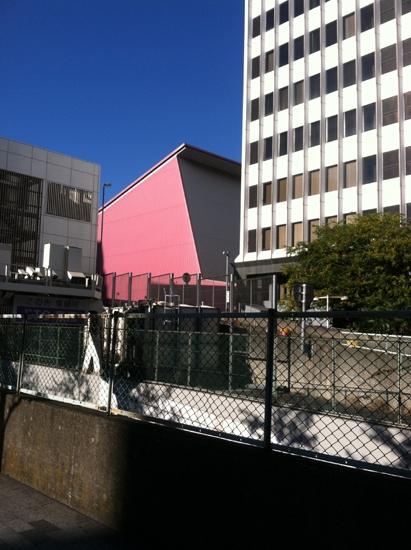 pinkbuildingweb.jpg