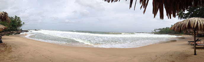 goyambokka beach boat palms