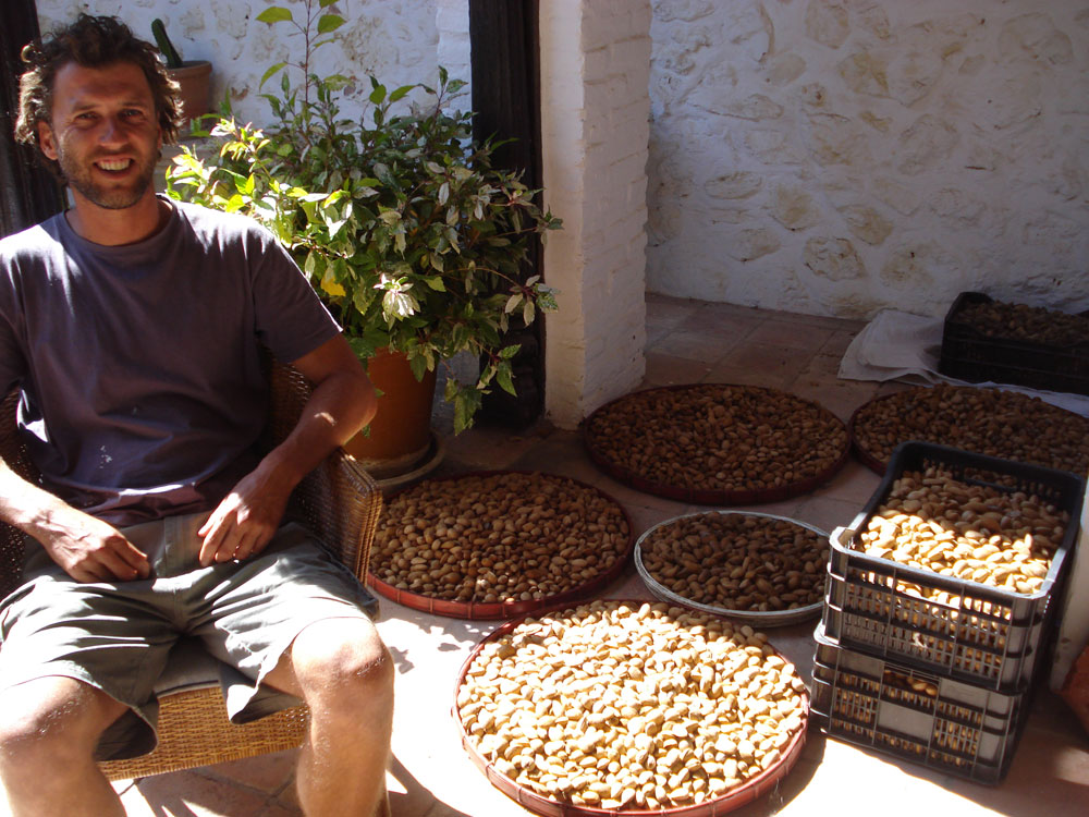 almonds-4.jpg