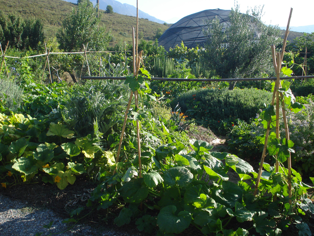 2012 showing polyculture food production