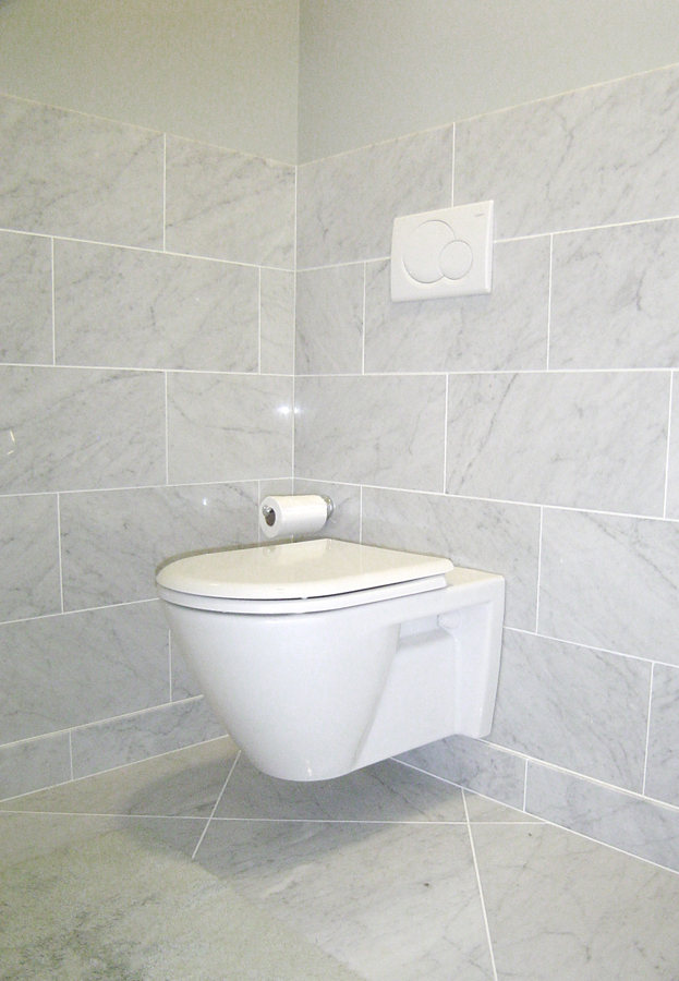 Modern Floating Toilet Bathroom Renovation Princeton.jpg