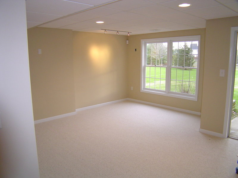 Basement Renovation Window Replacement Princeton NJ optimized.jpg