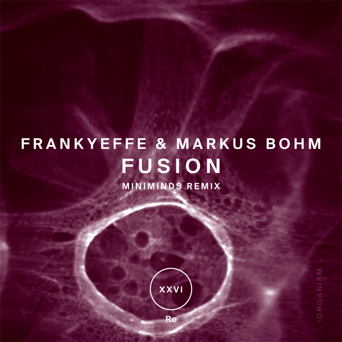 Frankyeffe & Markus Bohm - Fusion (+Miniminds Remix)