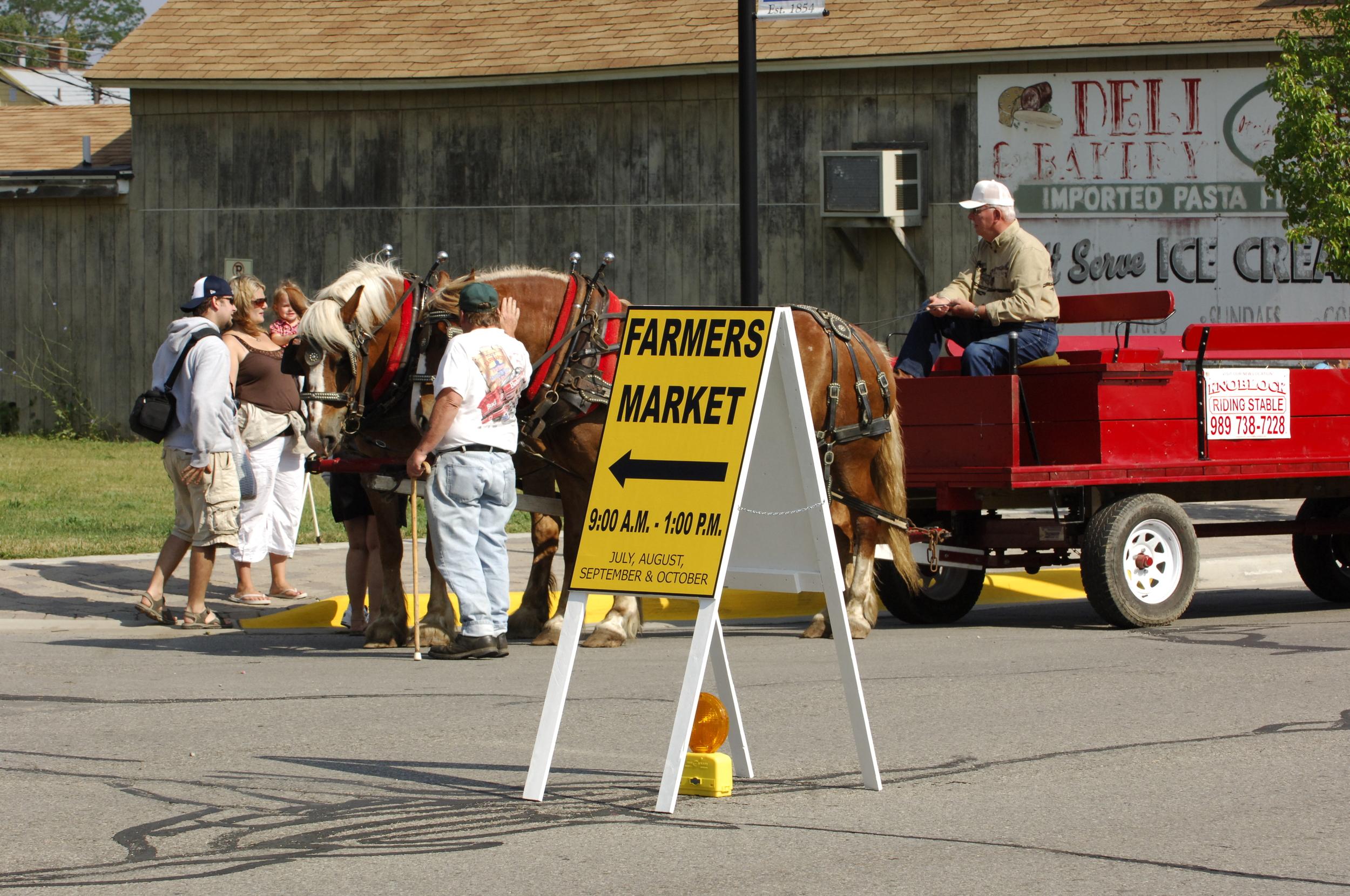 LIVEandCOMMUNITYandFARMMARKET Port Austin Farmers Market (2).JPG