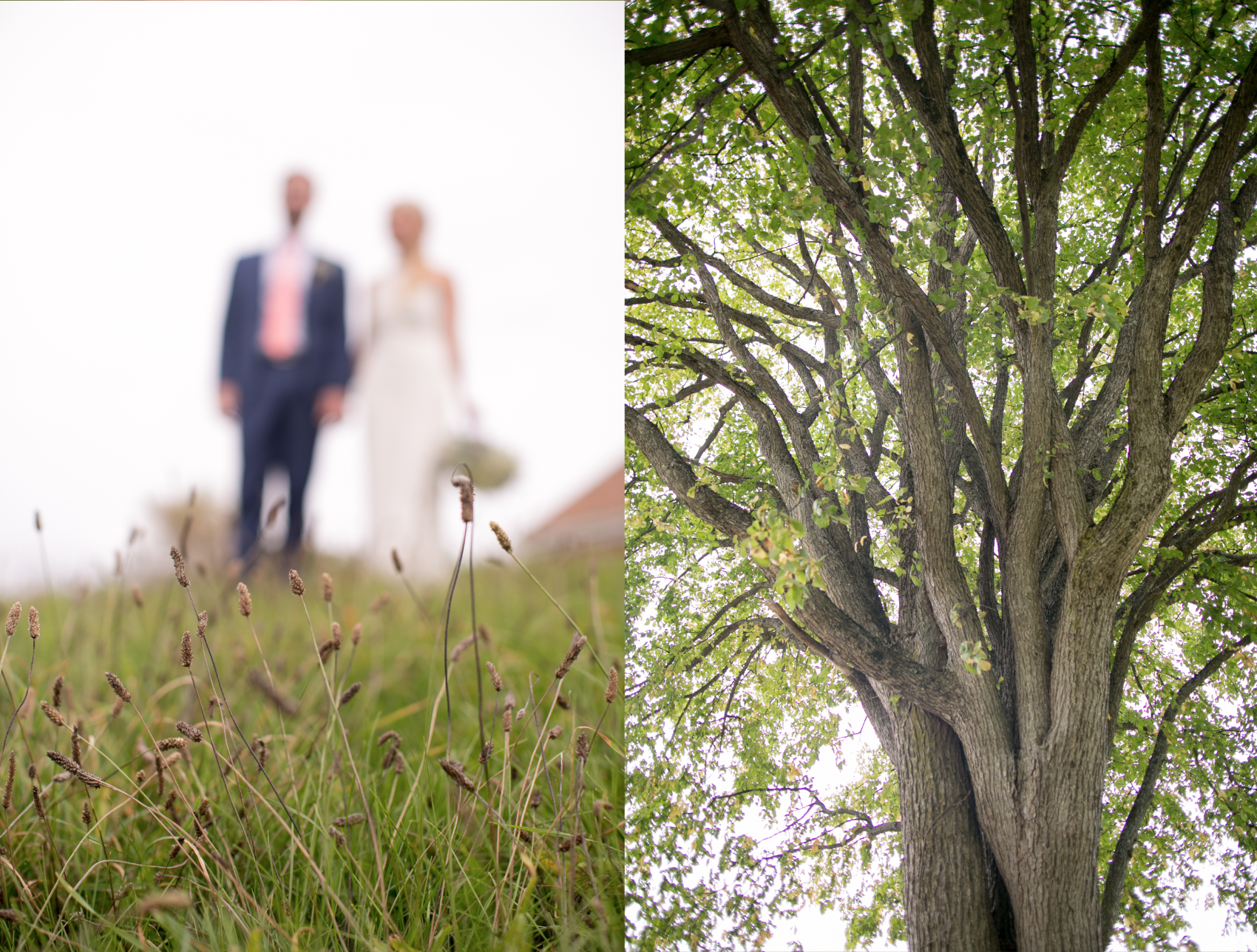 Fruitlands wedding photography magnolia 4.png
