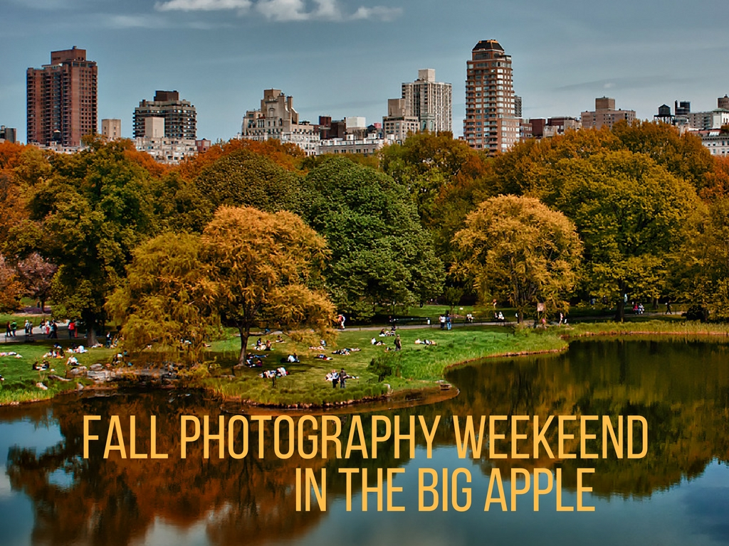Learn how you can join this fall photography workshop Oct. 27-30