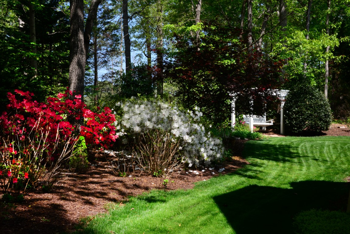 Beautiful, mature landscaping.jpg