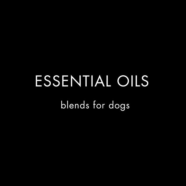 The natural way to care for your pet. Essential Oils can be used for skin care, ear health, pest repellent, mood stability & more. #theritualofpetcare . . .#nature #essentialoils #eo #aromatherapy #dog #dogs #dogsofinstagram #lovemydog #dogoftheday #vegan #love #apothecary #naturalwellness