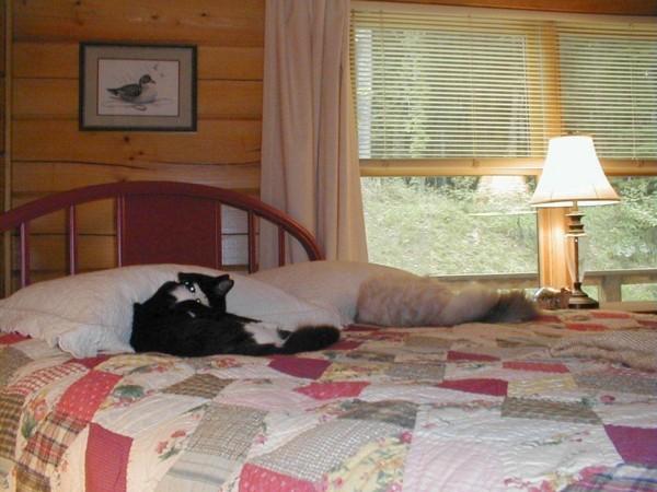 171541-4 bedroom.jpg