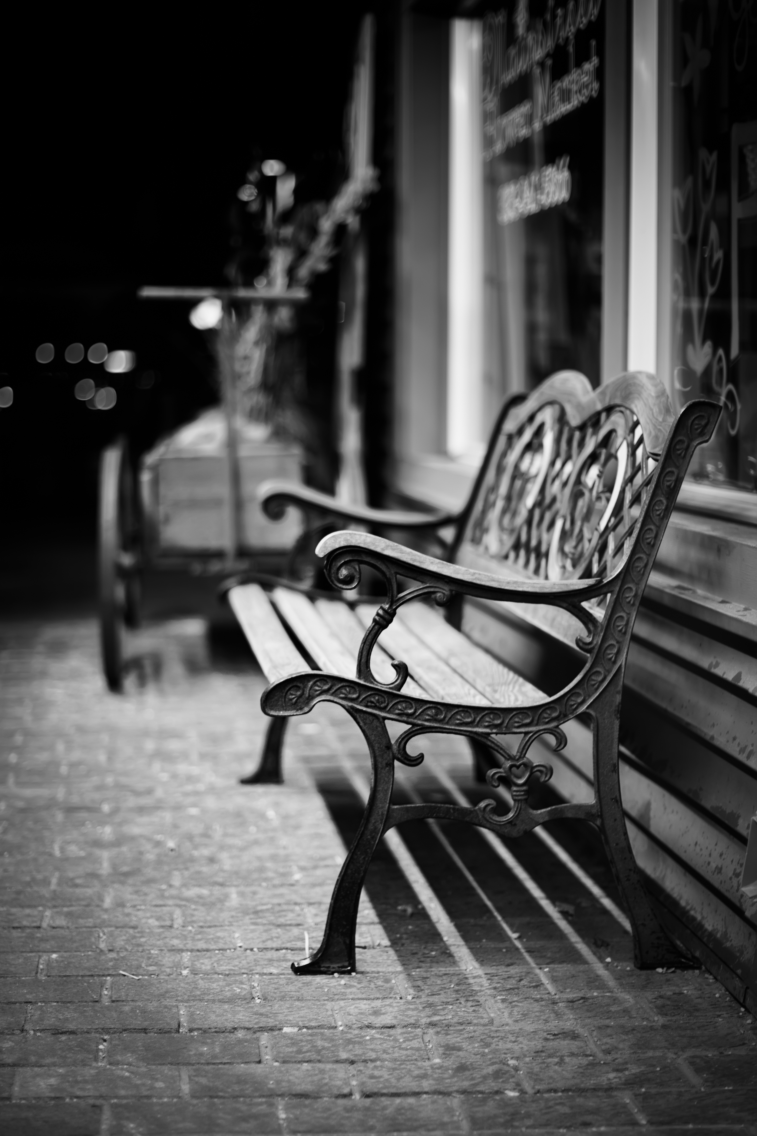 A bench waiting to be used