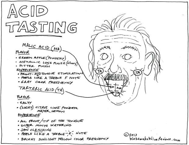 AcidTasting-620x478.jpg