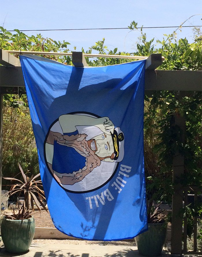 """Custom illustration of Brandon is used for a flag at his party, 'Blue Ball"""""""