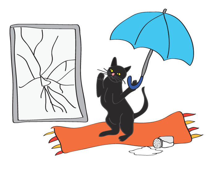Uh oh! My black cat just spilled the salt while dancing with an umbrella indoors in front of a broken mirror! Happy Friday the 13th!