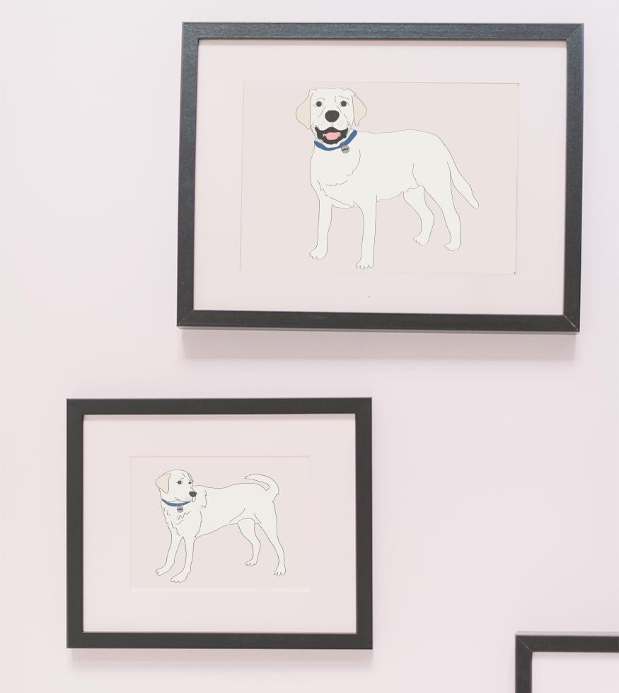 golden lab dog illustration