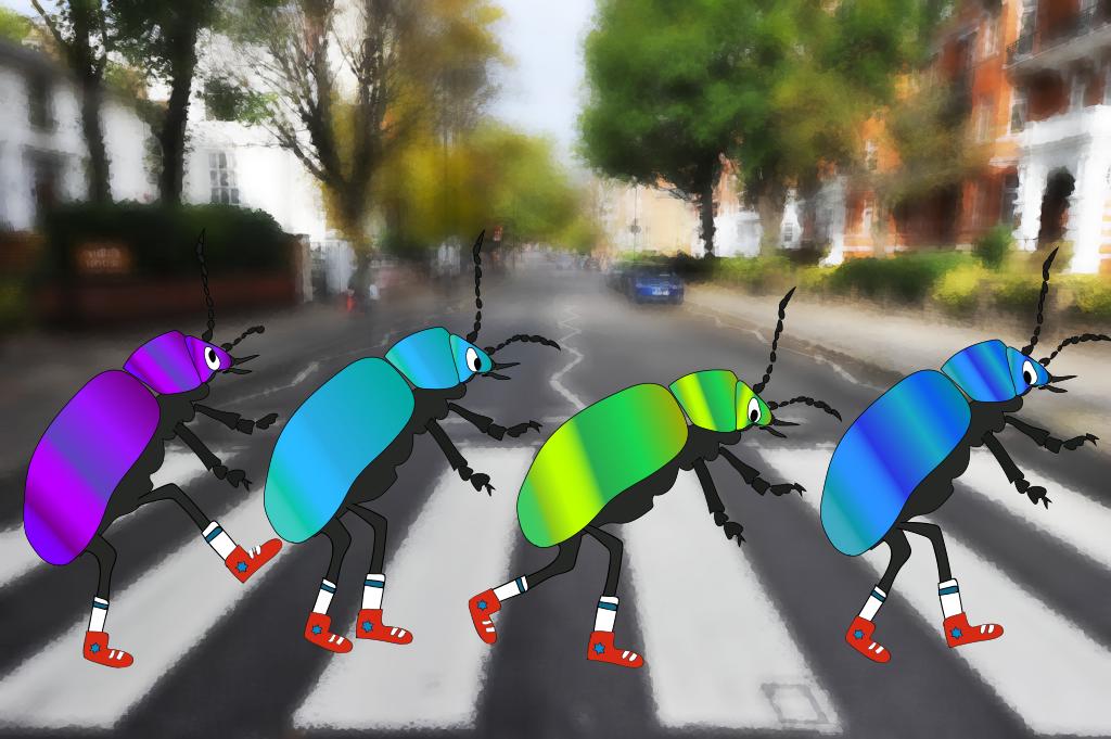 The Beetles, illustration