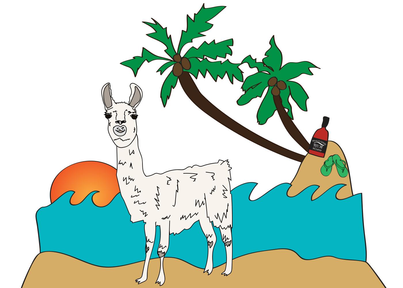 Bahama Llama illustration