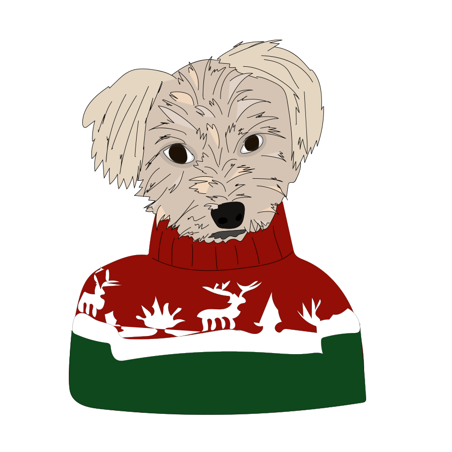 Nicky in a Christmas Sweater