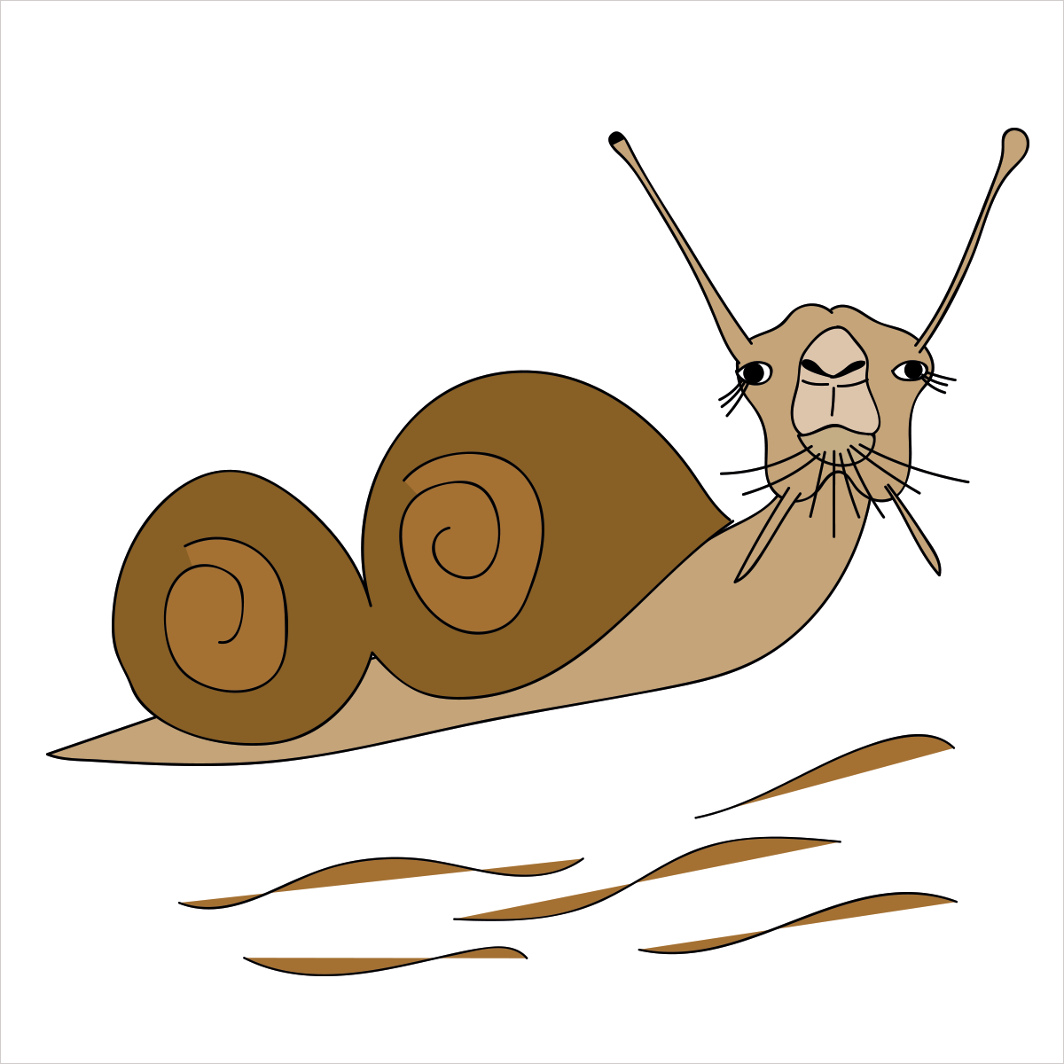 She's a two-humped beauty that's slower than molasses and can go as long as seven months without water in the desert. She is CAMELSNAIL