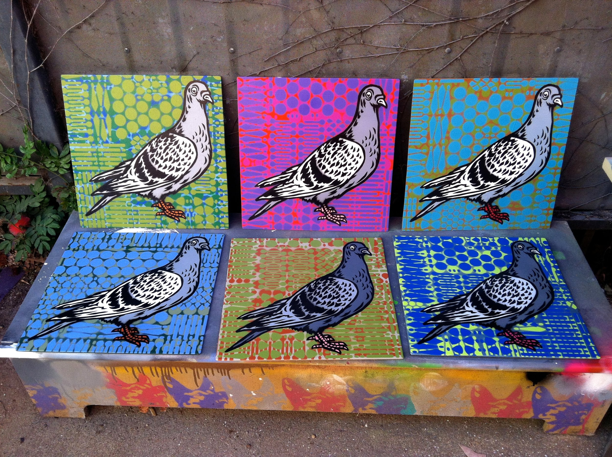 """""""Pigeon"""" Spray paint/stencil on wood panel, 20""""x20"""" Edition of 6"""